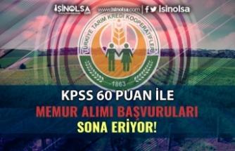 KPSS 60 Puan İle Tarım Kredi Memur Alımı İçin Son Gün!