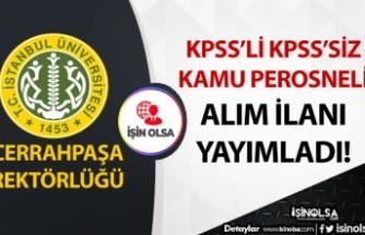 İstanbul Üniversitesi KPSS'li KPSS'siz Kamu Personeli Alım İlanı Yayımladı!