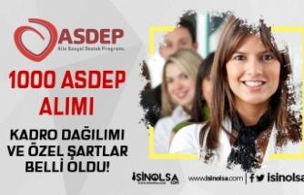 Türkiye Geneli 1000 ASDEP Personeli Alımı Bölümleri ve Özel Şartlar Nedir?