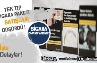 Tek Tip Sigara Paketinden Sonra Satışlarda Düşüş Oldu!