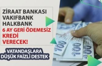Ziraat, Halkbank VakıfBank Düşük Faizli 6 Ay Geri Ödemesiz Kredi!