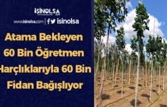 Atama Bekleyen 60 Bin Öğretmen Harçlıklarıyla 60 Bin Fidan Bağışlıyor