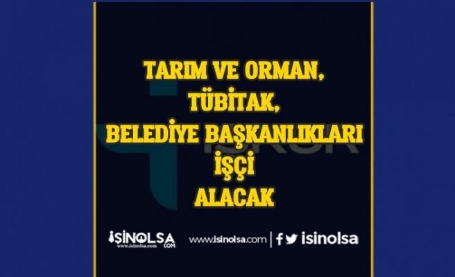 Tarım ve Orman, Tübitak Ume ve Belediyeler İŞKUR'dan İşçi Alımı Yapacak!