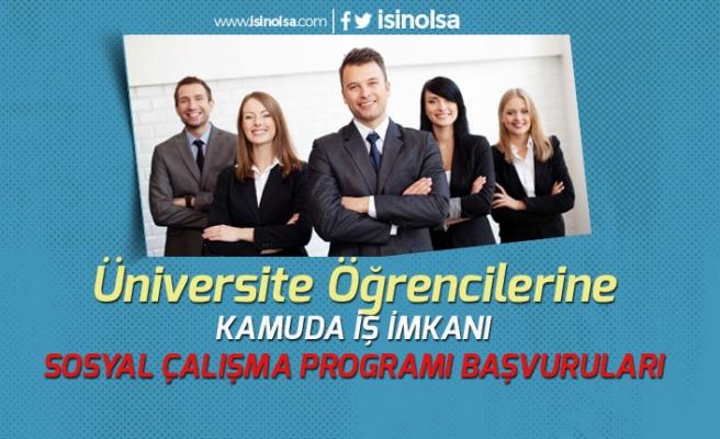 Üniversite Öğrencilerine Kamuda İş İmkanı! Sosyal Çalışma Programı Başvuruları Başlayacak!