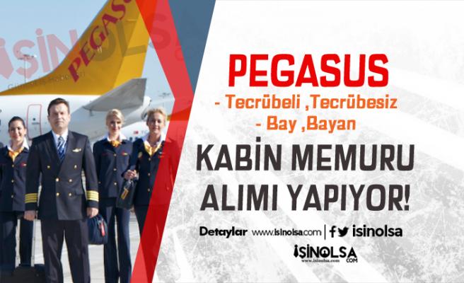 Pegasus Kabin Memuru Alımı Yapıyor! Başvuru Şartları Nedir?