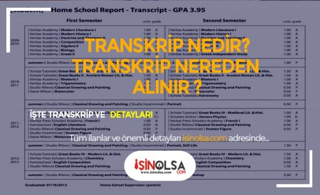 Transkript Nedir? Nasıl Alınır?