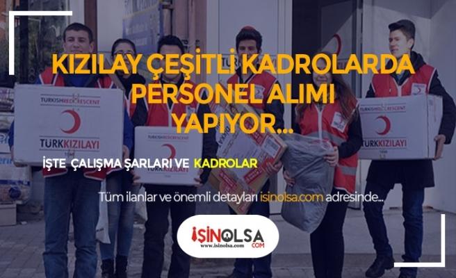 Türk Kızılayı 3 Pozisyonda 5000 TL Maaş İle Personel Alıyor