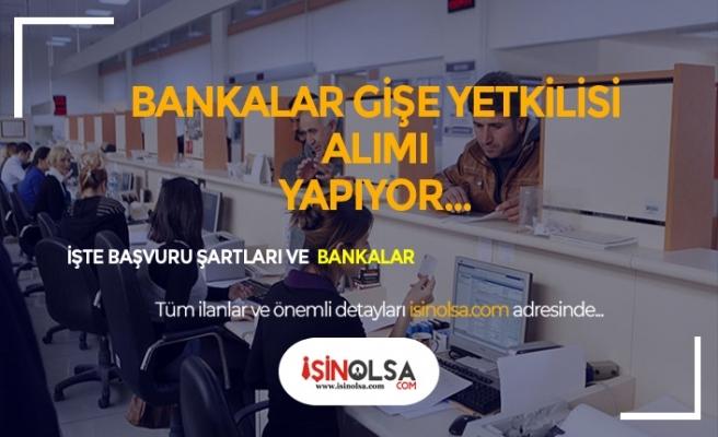 3 Banka Gişe Yetkilisi Alımları Başladı! İşte Başvuru Linki