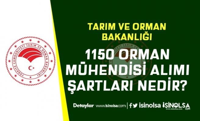 Tarım Bakanlığı 1150 Orman Mühendisi Alacak! Başvuru Tarihi Açıklandı