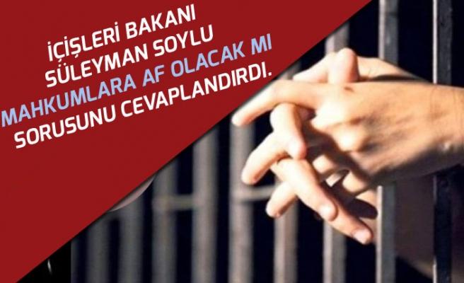 Bakan Soylu Mahkumlara Af Olacak mı Sorusunu Cevaplandırdı!