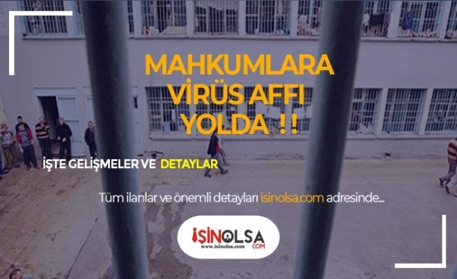 Mahkûmlara Korana Virüs Affı !!