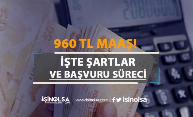 Hükümet 903 TL maaş için harekete geçti! İşte şartlar
