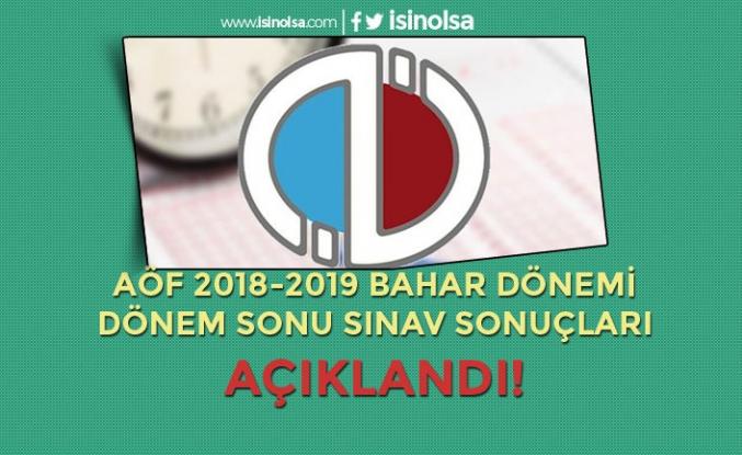 AÖF 2018-2019 Bahar Dönemi Dönem Sonu Sınavı Sonuçları Açıklandı! Sonuç Ekranı