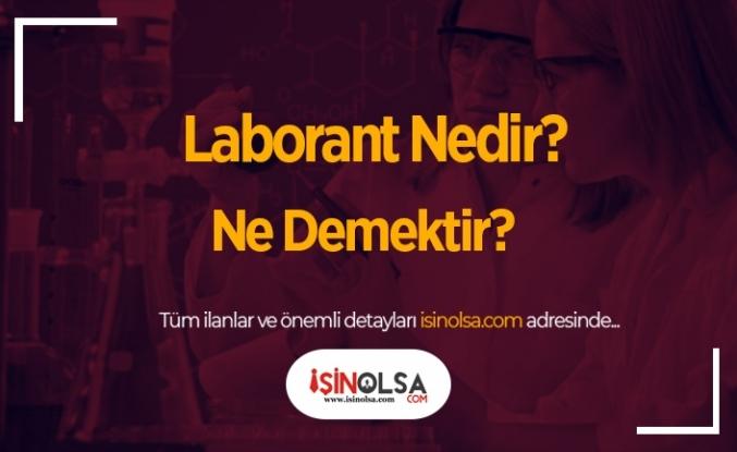 Laborant Nedir? Ne Demektir?