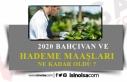 2020 Kamuda Bahçıvan, Kaloriferci, Hademe Maaşları...