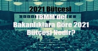 2021 Bütçesi TBMM'de! Bakanlıklara Göre 2021 Bütçesi Nedir?