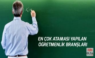 Ataması En Çok Olan Öğretmenlik Branşları hangileri?