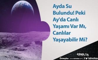 Ayda Su Bulundu! Peki Ay'da Canlı Yaşamı Var Mı, Canlılar Yaşayabilir Mi?