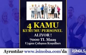 4 Kamu Kurumu 7 Bin TL Maaşla Bilişim Personeli Alıyor!