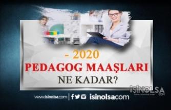 2020 Kamuda Pedagog Maaşları Ne Kadar?