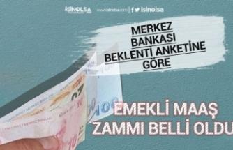 Merkez Bankasının Anketinden Emekli Maaşı Zammı 344 Tl Çıktı!