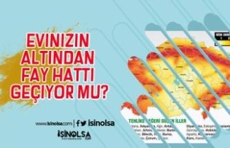 Türkiye Fay Hatları! Evinizin Altından Fay Hattı Geçiyor Mu?