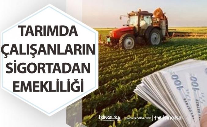 Tarım Çalışanlarının Sigortası Nasıl ve Neye Göre Yapılır?
