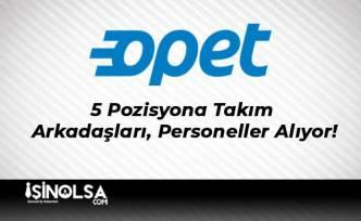 Opet 5 Pozisyona Takım Arkadaşları, Personeller Alıyor!