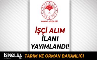 Ankara İl Tarım ve Orman Müdürlüğü İşçi Alım İlanı Yayımlandı! Lise Mezunu